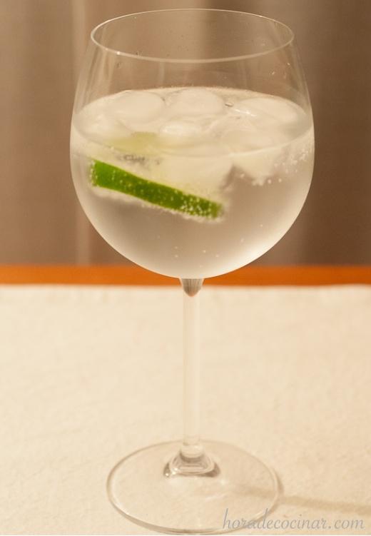 Gin Tonic fácil y perfecto