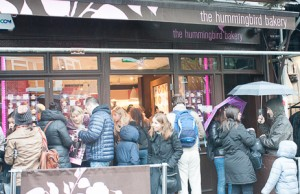 Tienda Hummingbird